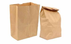 Biodegradable Paper Bags